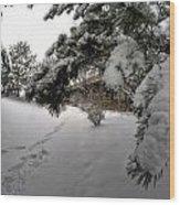 Queen City Winter Wonderland After The Storm Series 0029 Wood Print