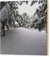 Queen City Winter Wonderland After The Storm Series 0030 Wood Print