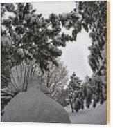 Queen City Winter Wonderland After The Storm Series 0031 Wood Print