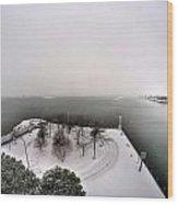 Queen City Winter Wonderland After The Storm Series 0034 Wood Print