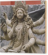 Queen Durga Wood Print by Shaun Higson
