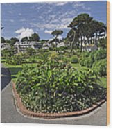 Queen Mary Gardens - Falmouth Wood Print