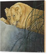 Queen Of The Jungle... Wood Print