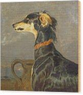 Queen Victorias Favourite Dog, Eos Wood Print