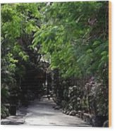 Queens Staircase Nassau Bahamas Wood Print by Keith Stokes