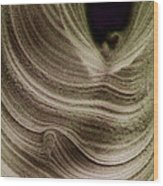 Query Strange Wood Print