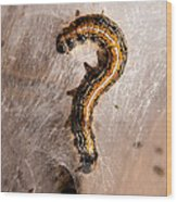 Question Mark Wood Print