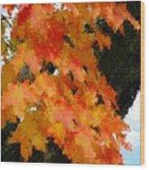 Quick Take On Autumn Wood Print