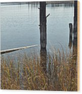 Quiet Day On Yellowstone's Goose Lake Wood Print