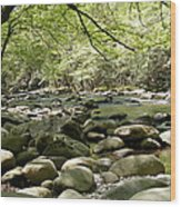 Quiet Place In The Smokies Wood Print
