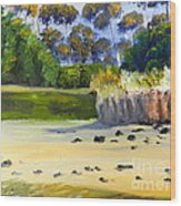 Quiet Sand By The Creek Wood Print