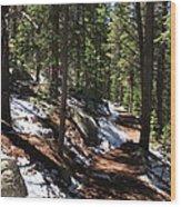 Quiet Serenity Wood Print