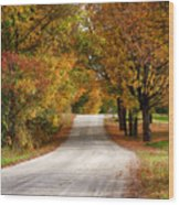 Quiet Vermont Backroad Wood Print
