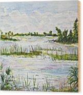 Quiet Waters Park Deerfield Beach Fl Wood Print