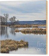 Quiet Wetlands Wood Print
