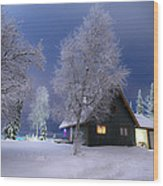 Quiet Winter Times Wood Print by Ron Day