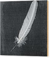 Quill Wood Print