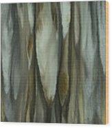 Quills Wood Print