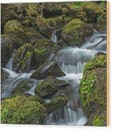Quinault Waterfall Wood Print