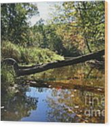 Quinnebaug Reflections  Wood Print