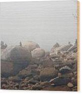 Quissett Fog 2 Wood Print