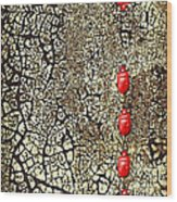 Quo Vadis Wood Print