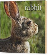 R Is For Rabbit Wood Print