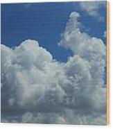 Rabbit Cloud Wood Print