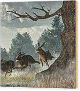 Rabbit Race Wood Print