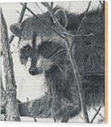 Raccoon - Charcoal Experiment Wood Print