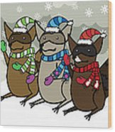 Raccoons Winter Wood Print by Christy Beckwith