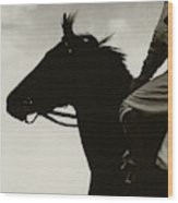 Race Horse Gallant Fox Wood Print