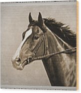 Race Horse Old Photo Fx Wood Print by Crista Forest