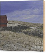 Race Point Light Shed Wood Print