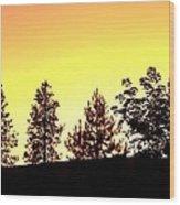 Radiance Of Nature Wood Print