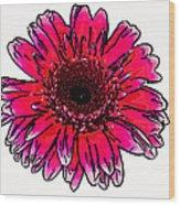 Radiant Sketch Wood Print