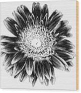 Radiant Solarized Wood Print