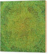 Radiation With Green Yellow And Orange  Wood Print