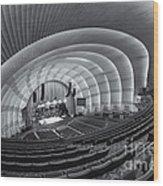 Radio City Music Hall Iv Wood Print