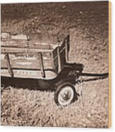 Radio Flyer Trav-ler Wagon Wood Print