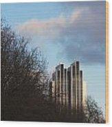 Radisson Blu Hotel Hamburg Behind Trees Wood Print