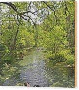 Rafting The Springs Wood Print