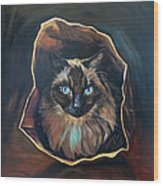 Cat Painting. Ragdoll Cat The Cat's In The Bag Wood Print