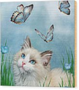 Ragdoll Kitty And Butterflies Wood Print