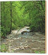 Raging Waters - West Virginia Backroad Wood Print