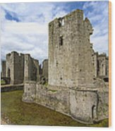 Raglan Castle - 3 Wood Print