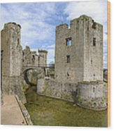 Raglan Castle - 5 Wood Print
