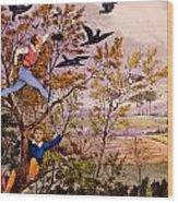 Raiding The Rook's Nest Wood Print