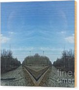 Rail Beak Wood Print