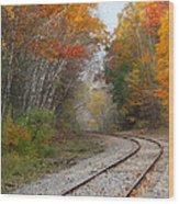 Rail Through The Colors Wood Print